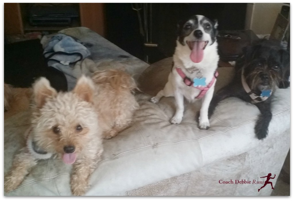 Happy to see me