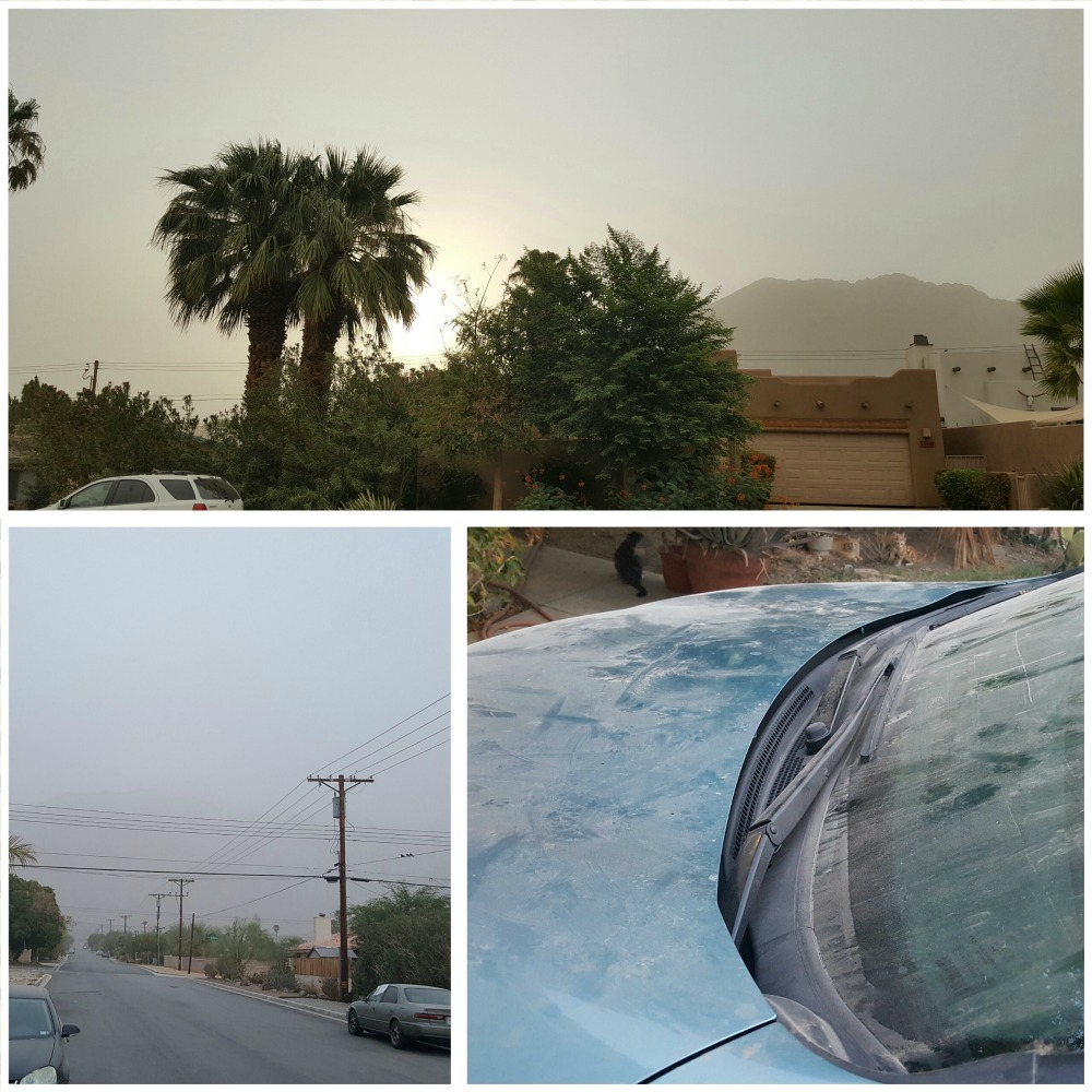 A huge dust storm made the air almost unbreathable and kept us indoors most of the weekend.