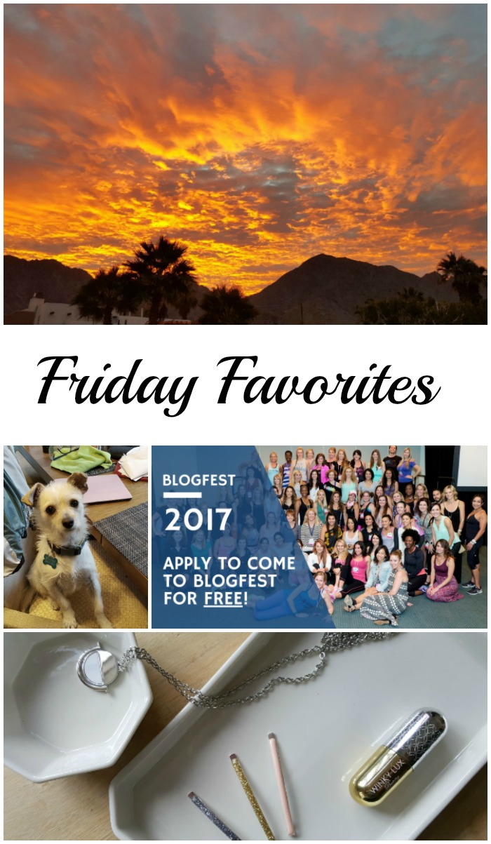 Don't miss Friday Favorites this week with news about Blogfest 2017, my December Popsugar Must Have Box, and an update on our rescue pups!