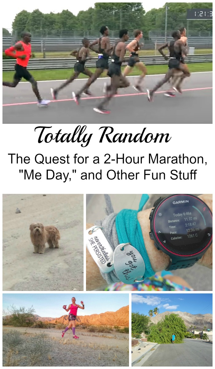 "We're going random today! The quest for a 2-hour marathon, my ""Me Day,"" a dog rescuer story, training update, and more!"