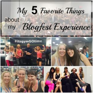 My 5 Favorite Things about my Amazing Blogfest Experience